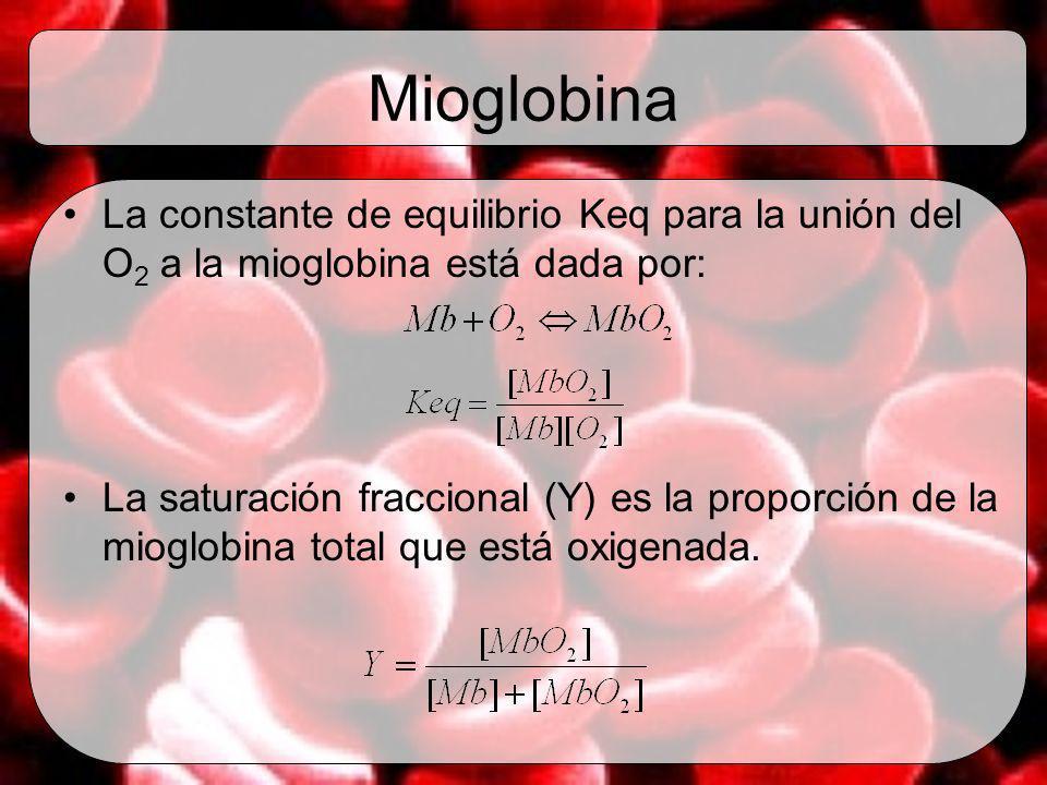 Mioglobina La constante de equilibrio Keq para la unión del O2 a la mioglobina está dada por: