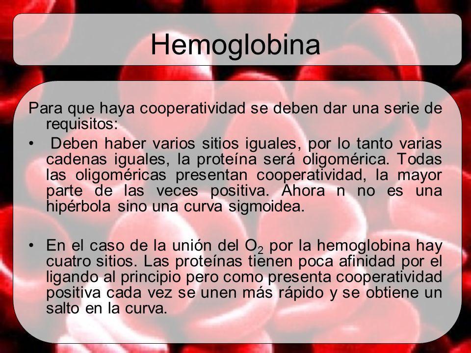 Hemoglobina Para que haya cooperatividad se deben dar una serie de requisitos:
