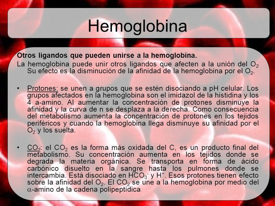 Hemoglobina Otros ligandos que pueden unirse a la hemoglobina.