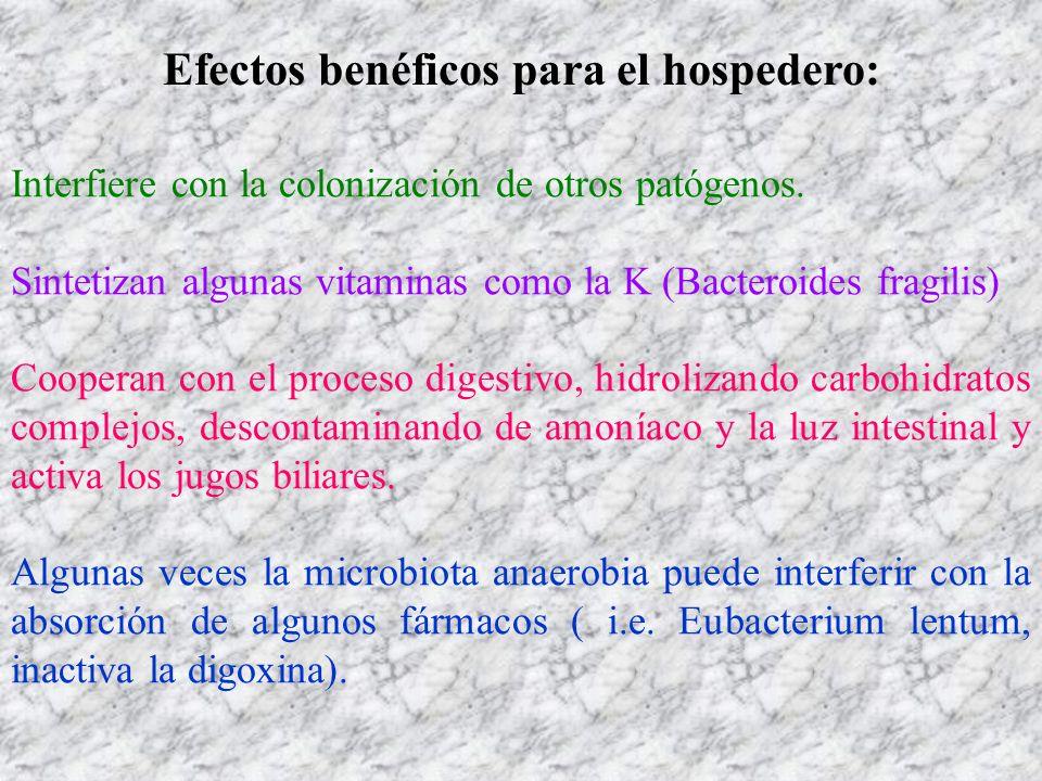 Efectos benéficos para el hospedero: