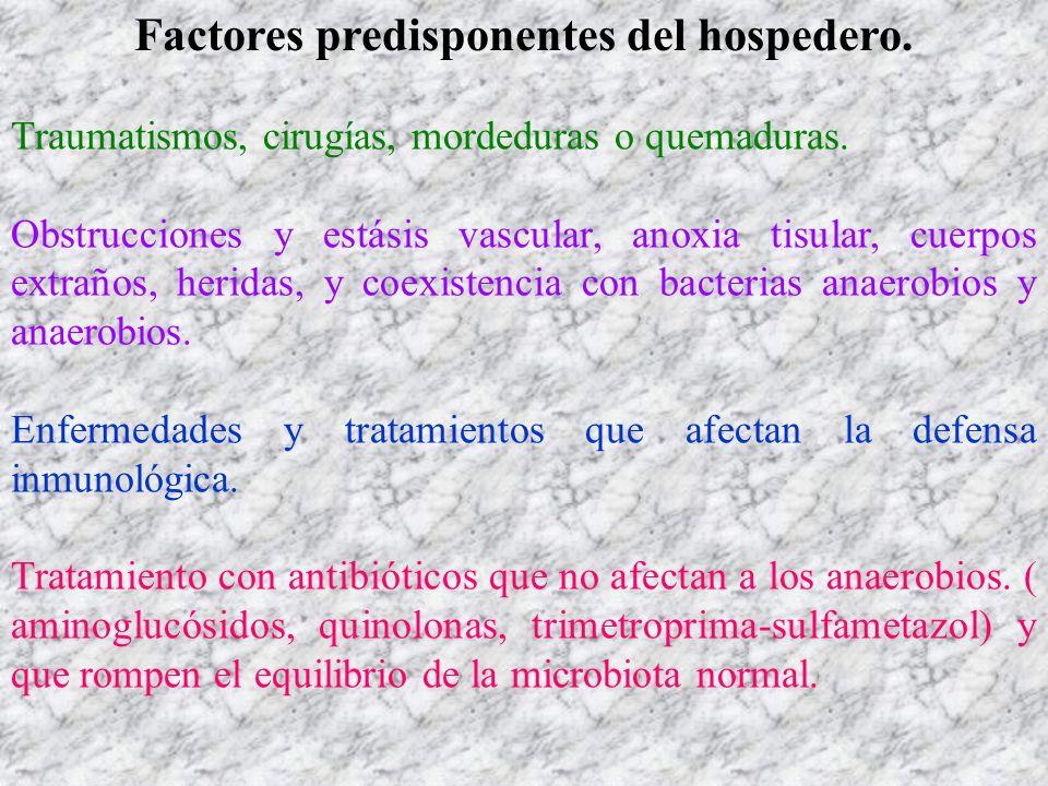 Factores predisponentes del hospedero.