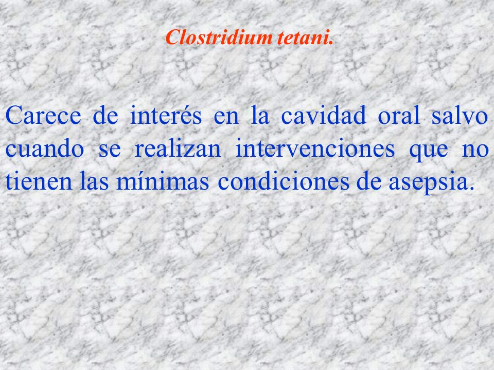 Clostridium tetani.