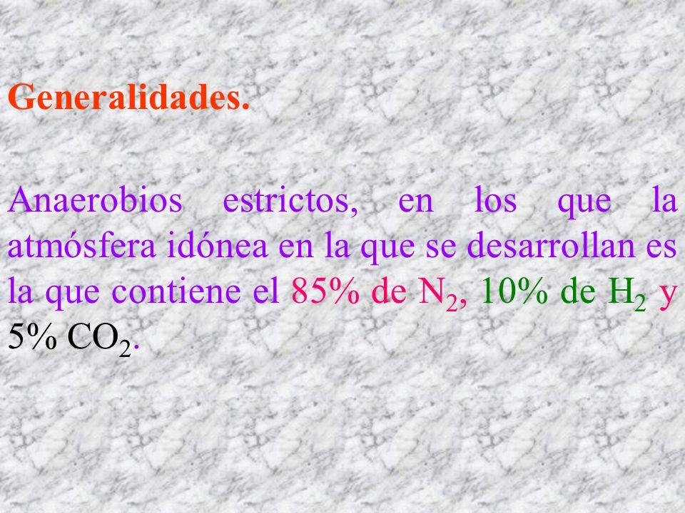 Generalidades.