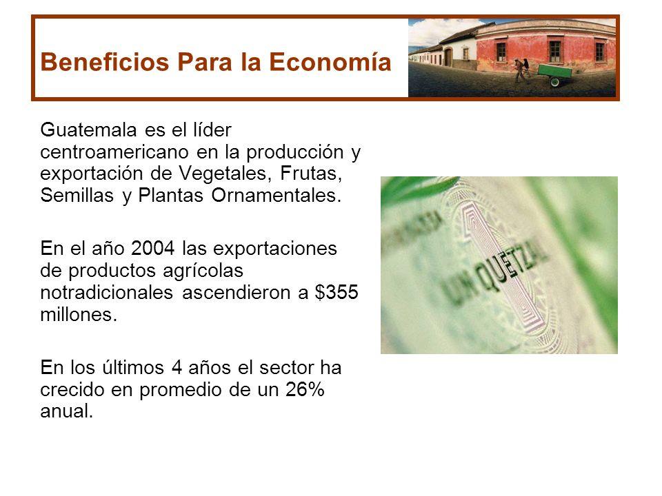 Beneficios Para la Economía