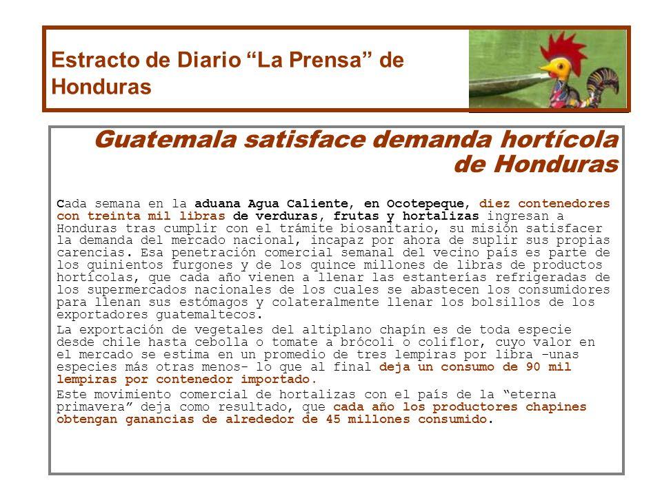 Guatemala satisface demanda hortícola de Honduras