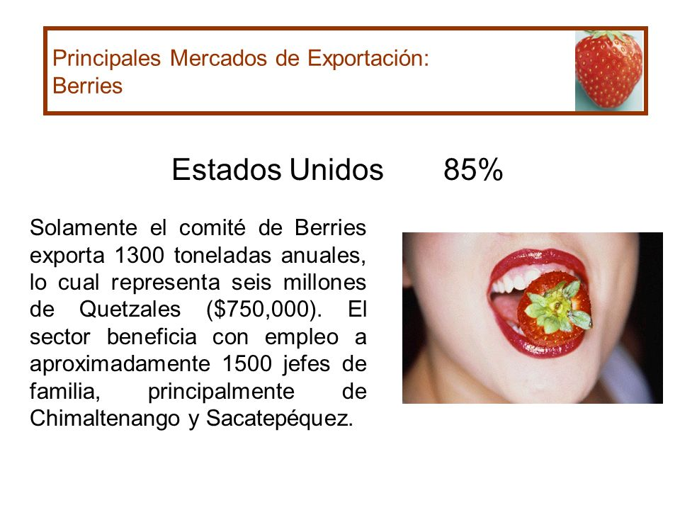 Estados Unidos 85% Principales Mercados de Exportación: Berries