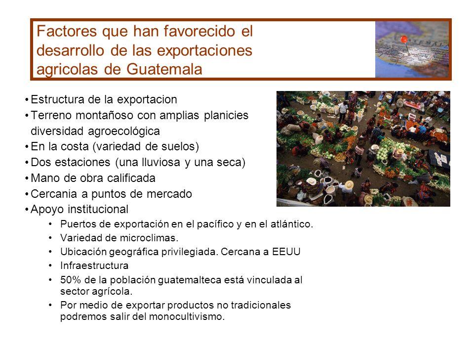 Factores que han favorecido el desarrollo de las exportaciones agricolas de Guatemala