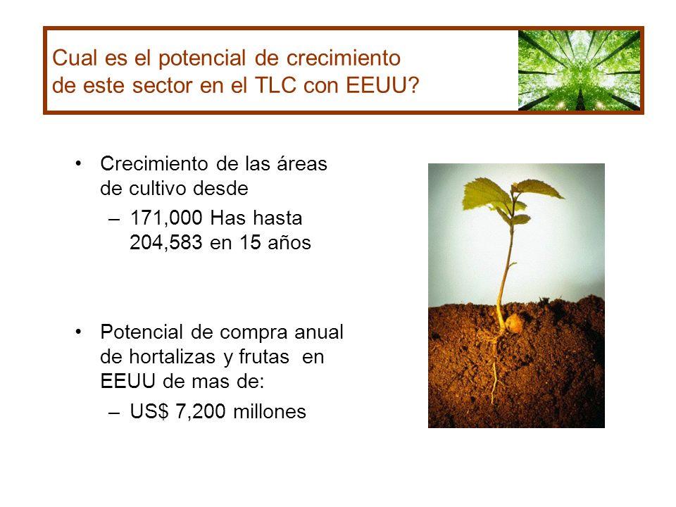 Cual es el potencial de crecimiento de este sector en el TLC con EEUU