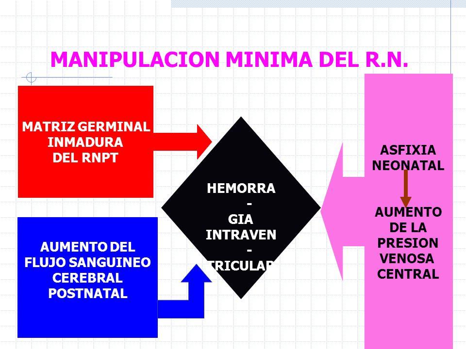 MANIPULACION MINIMA DEL R.N.