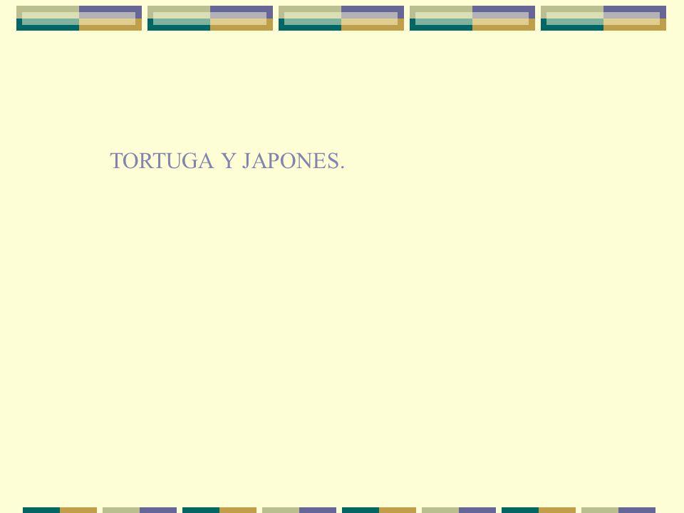 TORTUGA Y JAPONES.