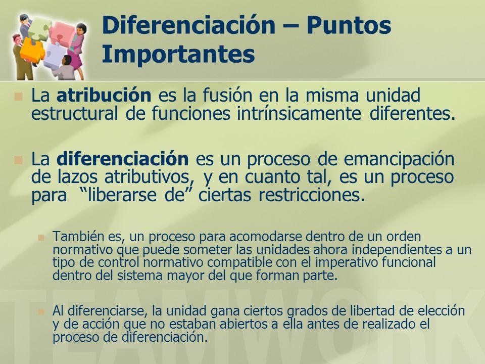 Diferenciación – Puntos Importantes