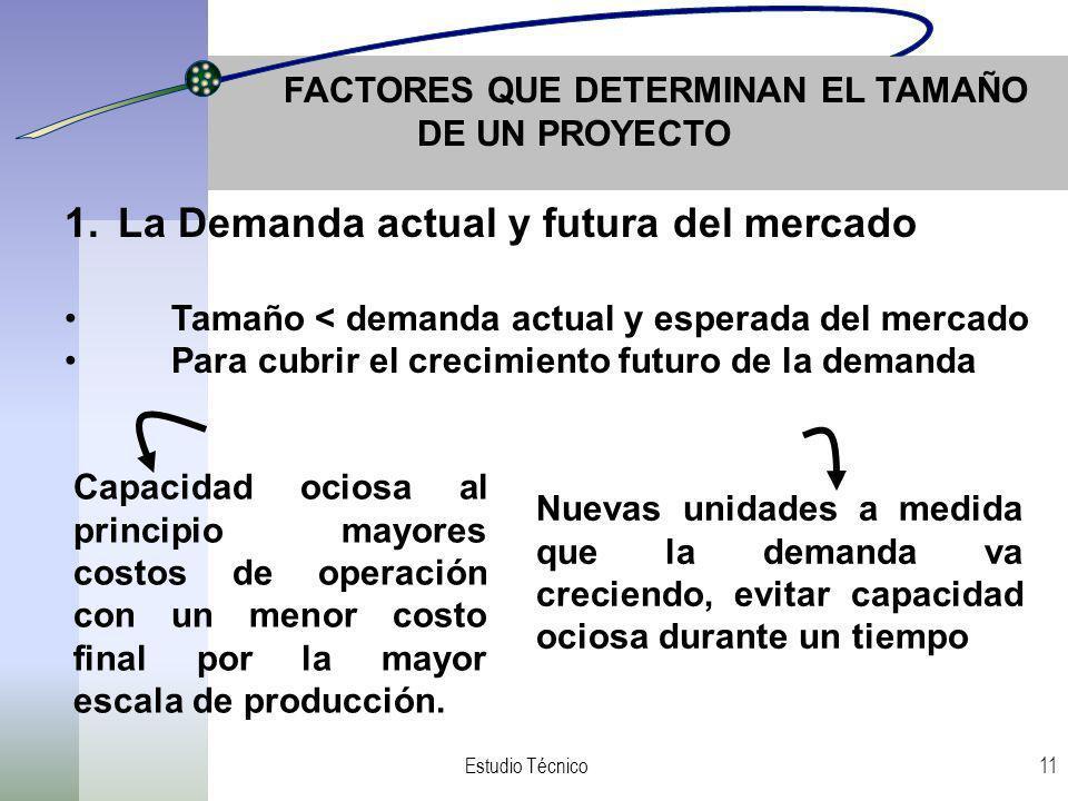 FACTORES QUE DETERMINAN EL TAMAÑO DE UN PROYECTO