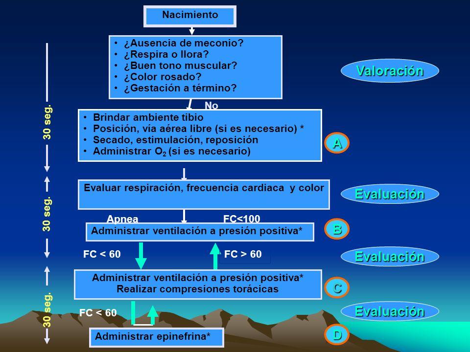 Valoración A Evaluación B Evaluación C Evaluación D