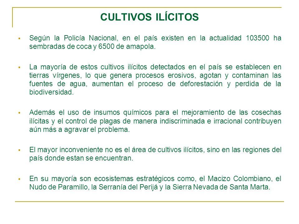 CULTIVOS ILÍCITOS Según la Policía Nacional, en el país existen en la actualidad 103500 ha sembradas de coca y 6500 de amapola.