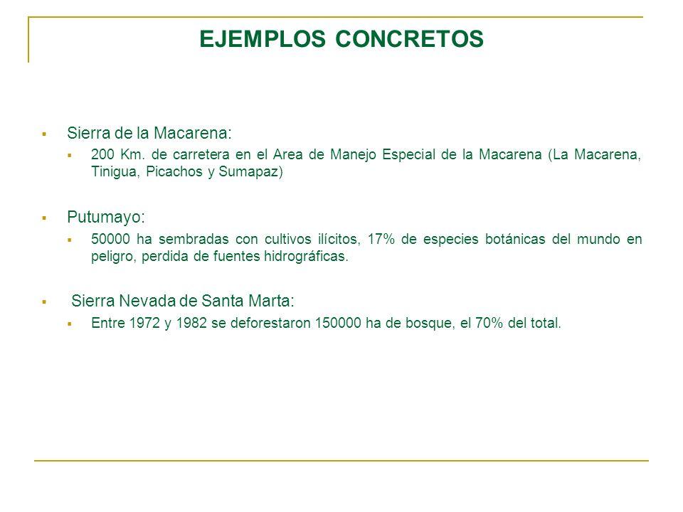 EJEMPLOS CONCRETOS Sierra de la Macarena: Putumayo: