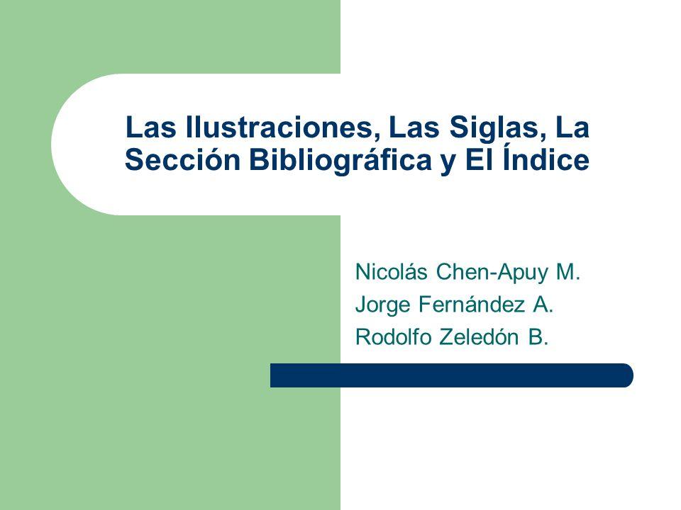 Las Ilustraciones, Las Siglas, La Sección Bibliográfica y El Índice