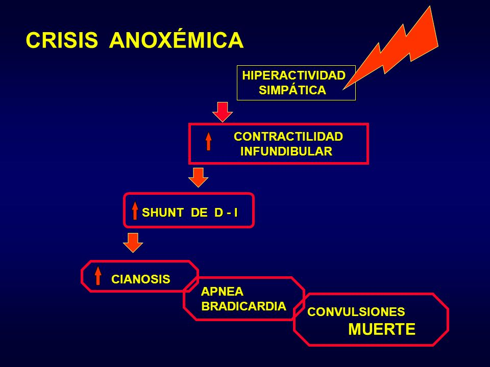CRISIS ANOXÉMICA HIPERACTIVIDAD SIMPÁTICA CONTRACTILIDAD INFUNDIBULAR