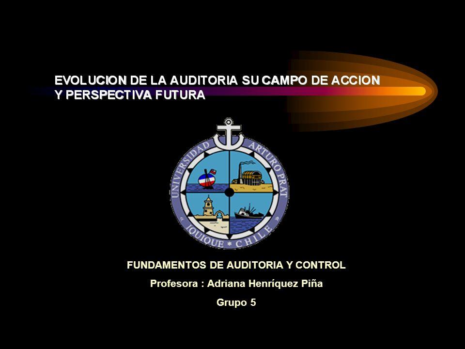 FUNDAMENTOS DE AUDITORIA Y CONTROL Profesora : Adriana Henríquez Piña