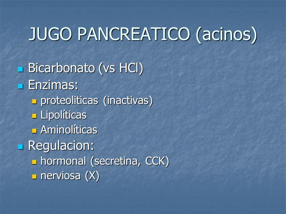 JUGO PANCREATICO (acinos)