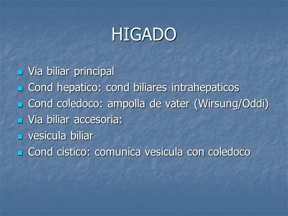 HIGADO Via biliar principal