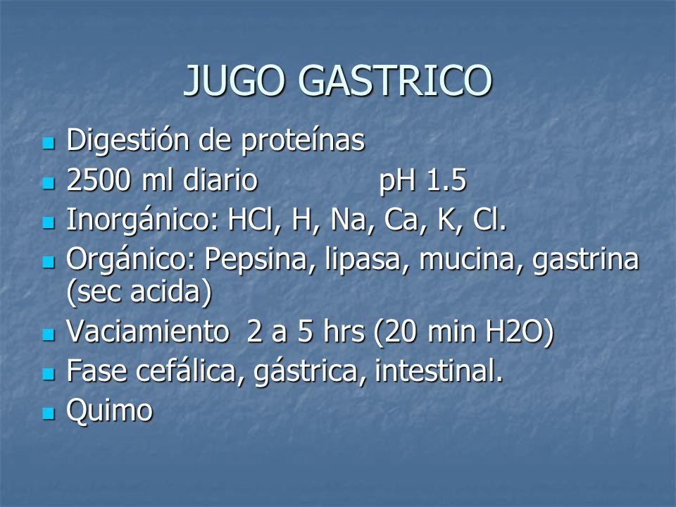 JUGO GASTRICO Digestión de proteínas 2500 ml diario pH 1.5