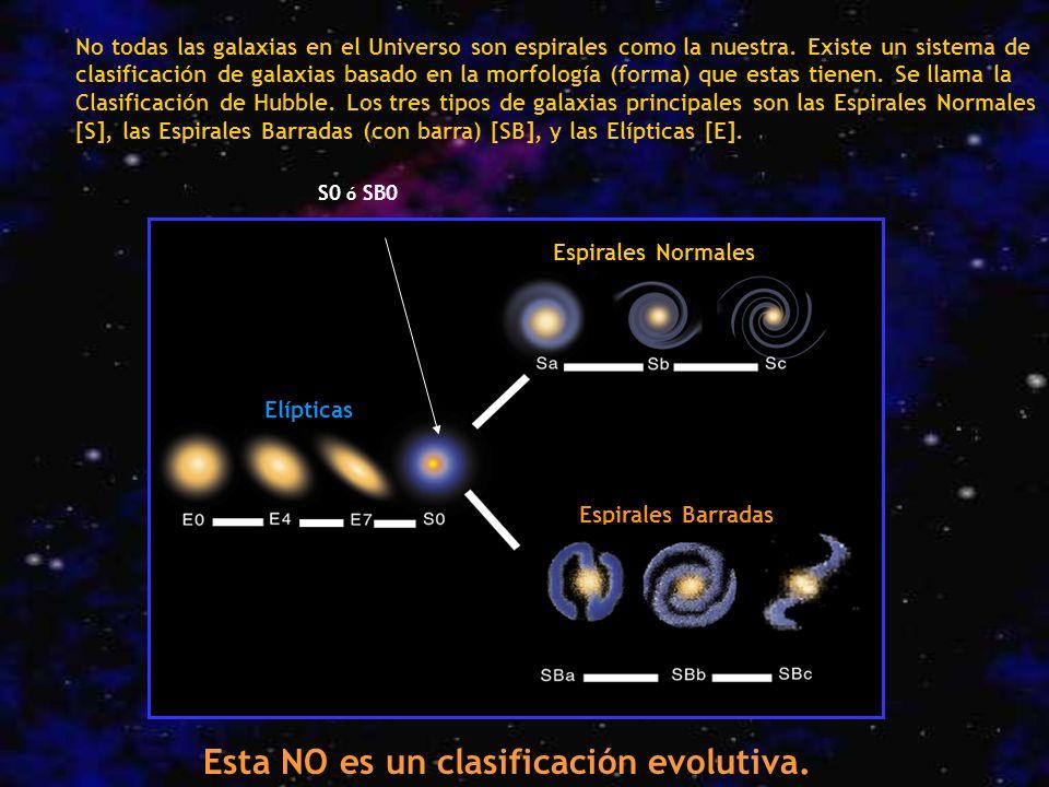 Esta NO es un clasificación evolutiva.