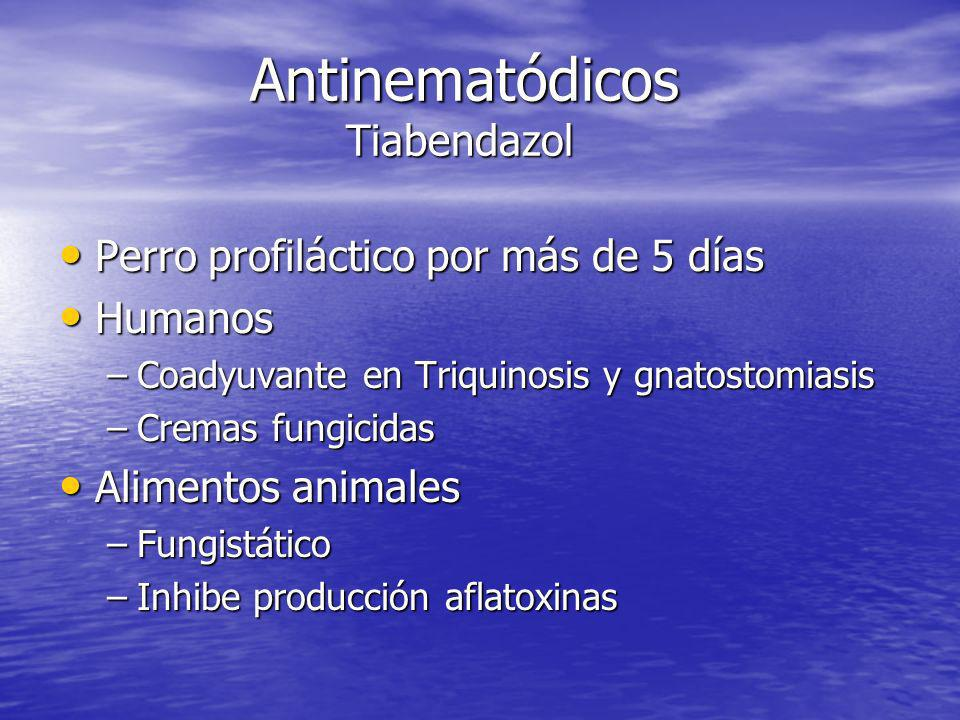 Antinematódicos Tiabendazol
