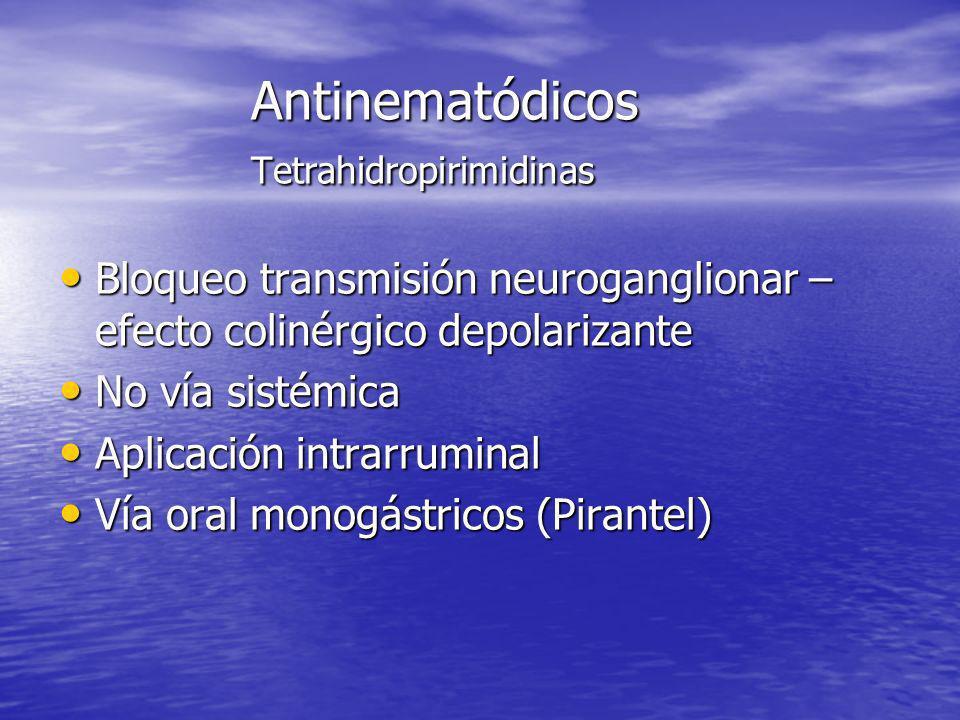 Antinematódicos Tetrahidropirimidinas