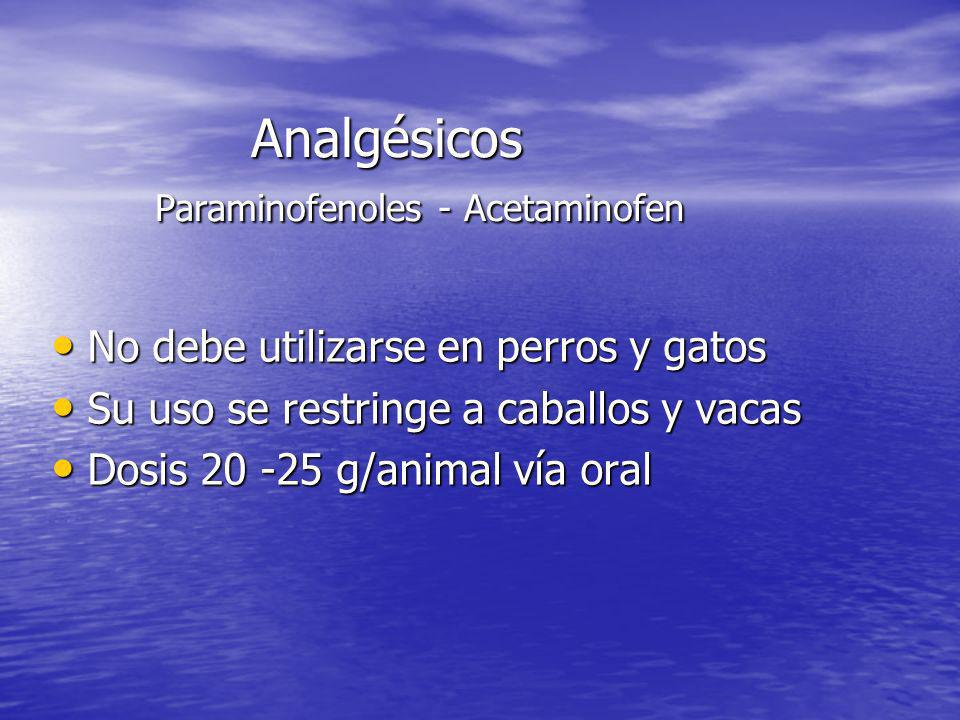 Analgésicos Paraminofenoles - Acetaminofen
