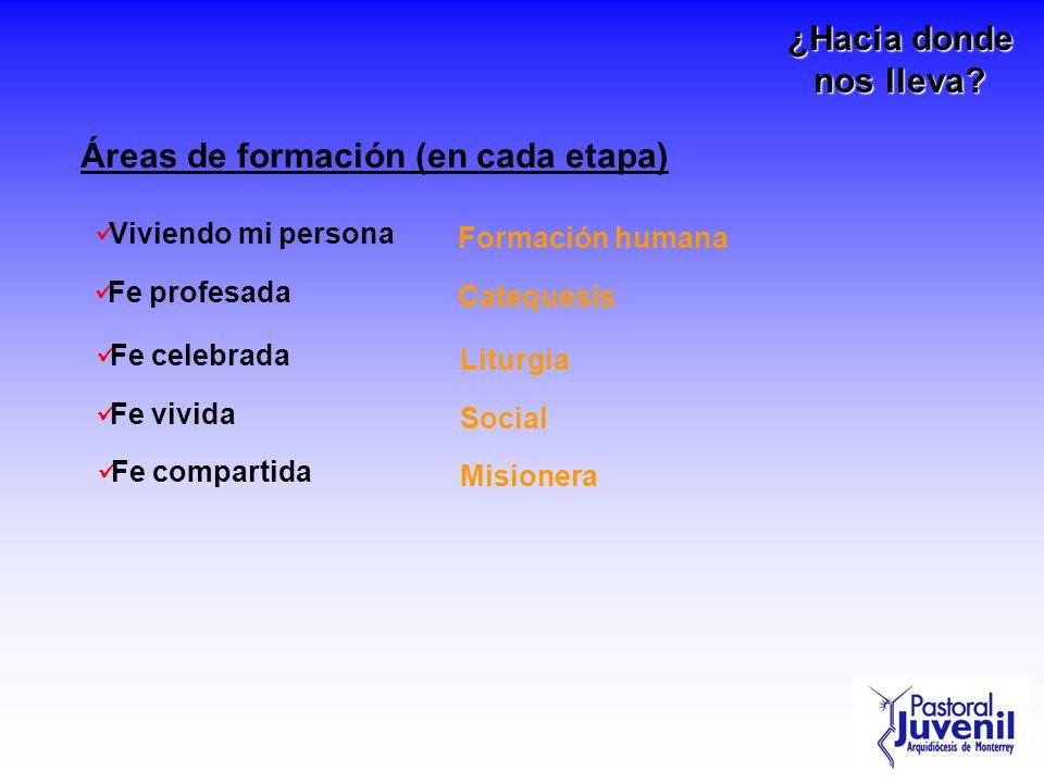 Áreas de formación (en cada etapa)