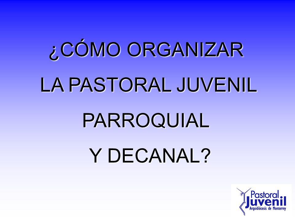 ¿CÓMO ORGANIZAR LA PASTORAL JUVENIL PARROQUIAL Y DECANAL