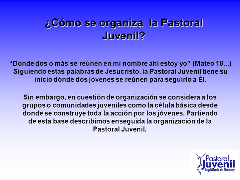 ¿Cómo se organiza la Pastoral Juvenil