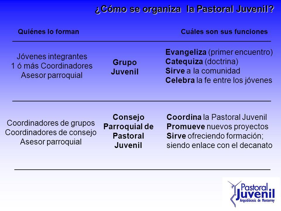 Cuáles son sus funciones Parroquial de Pastoral Juvenil