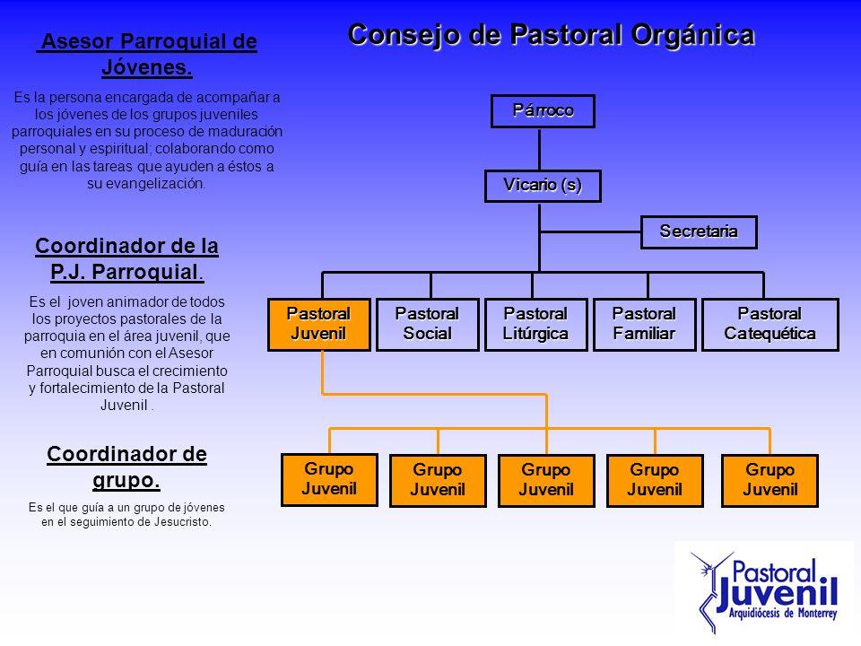 Consejo de Pastoral Orgánica Asesor Parroquial de Jóvenes.