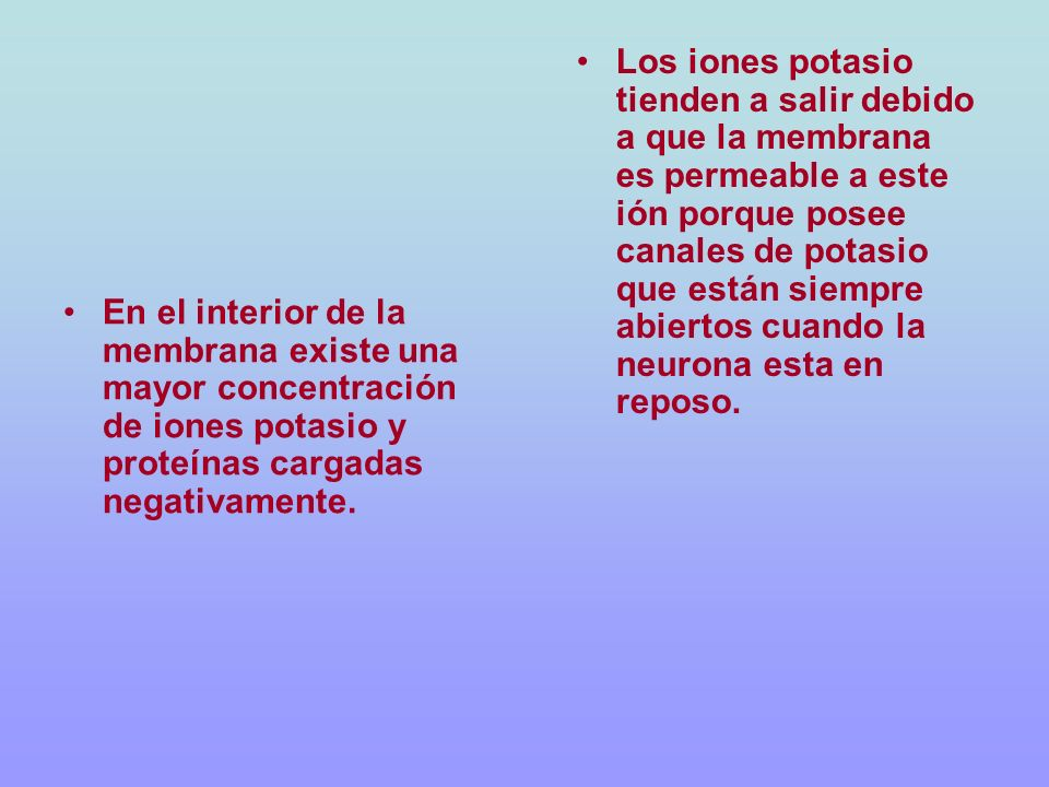 Los iones potasio tienden a salir debido a que la membrana es permeable a este ión porque posee canales de potasio que están siempre abiertos cuando la neurona esta en reposo.