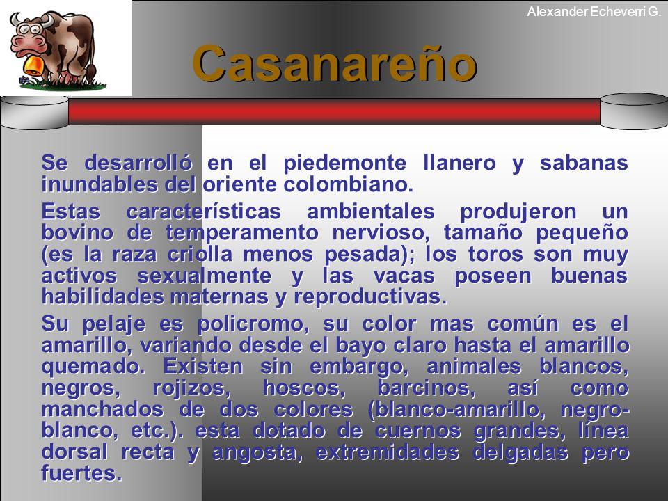CasanareñoSe desarrolló en el piedemonte llanero y sabanas inundables del oriente colombiano.