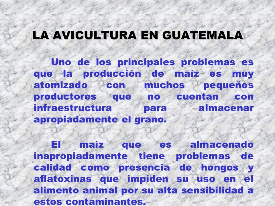 LA AVICULTURA EN GUATEMALA