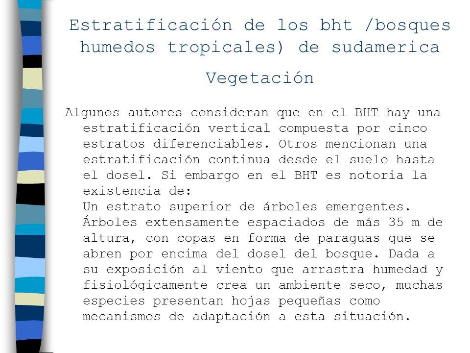 Estratificación de los bht /bosques humedos tropicales) de sudamerica Vegetación