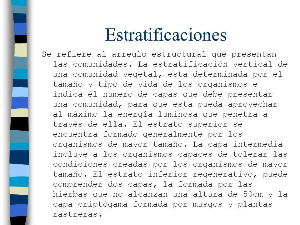 Estratificaciones