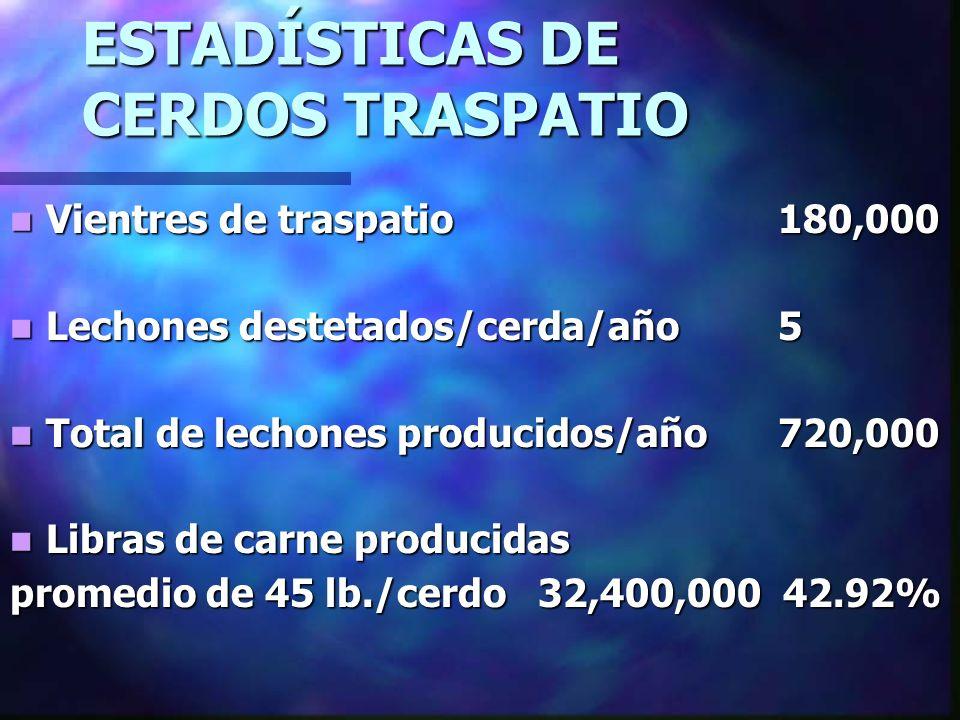 ESTADÍSTICAS DE CERDOS TRASPATIO