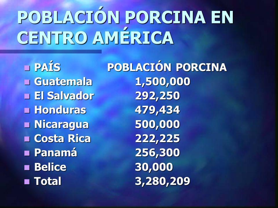 POBLACIÓN PORCINA EN CENTRO AMÉRICA
