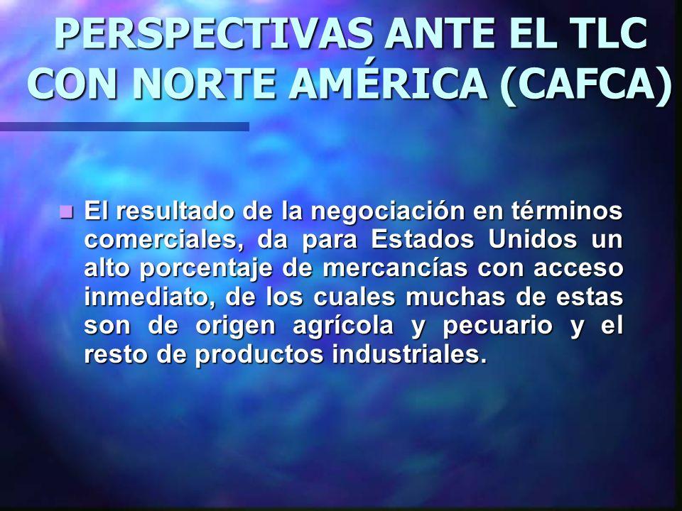 PERSPECTIVAS ANTE EL TLC CON NORTE AMÉRICA (CAFCA)
