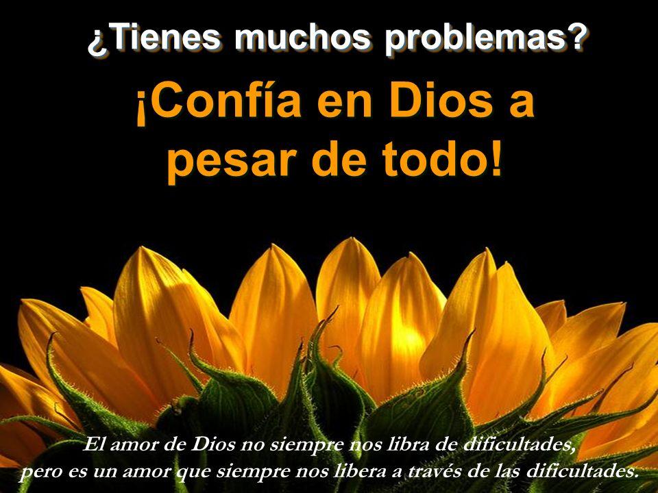 ¡Confía en Dios a pesar de todo!