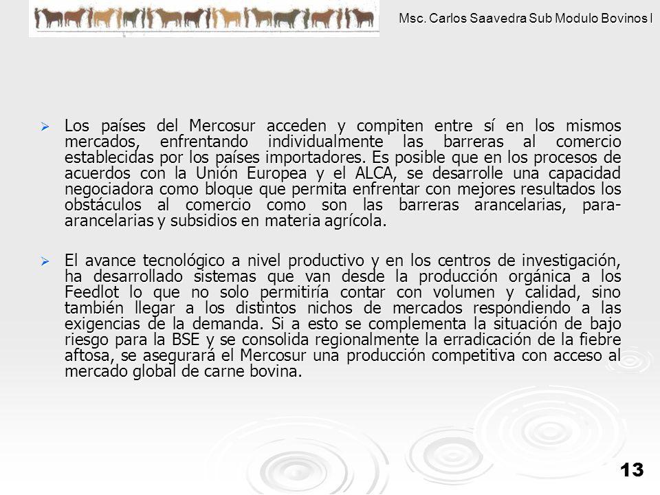 Los países del Mercosur acceden y compiten entre sí en los mismos mercados, enfrentando individualmente las barreras al comercio establecidas por los países importadores. Es posible que en los procesos de acuerdos con la Unión Europea y el ALCA, se desarrolle una capacidad negociadora como bloque que permita enfrentar con mejores resultados los obstáculos al comercio como son las barreras arancelarias, para-arancelarias y subsidios en materia agrícola.