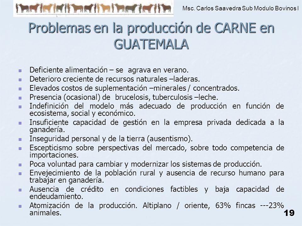Problemas en la producción de CARNE en GUATEMALA