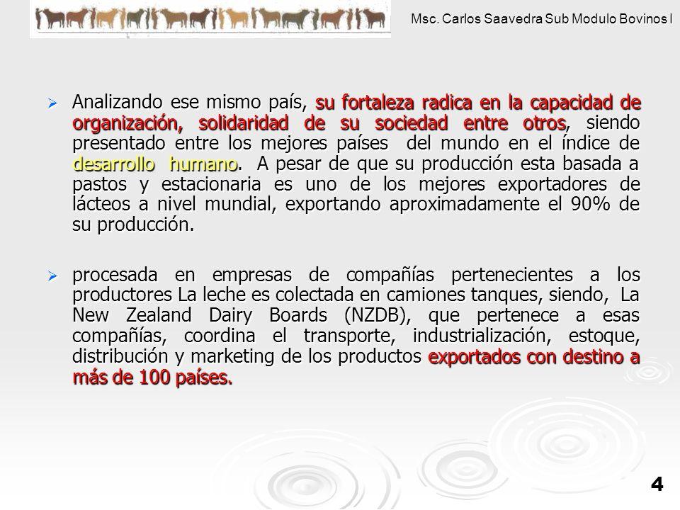 Analizando ese mismo país, su fortaleza radica en la capacidad de organización, solidaridad de su sociedad entre otros, siendo presentado entre los mejores países del mundo en el índice de desarrollo humano. A pesar de que su producción esta basada a pastos y estacionaria es uno de los mejores exportadores de lácteos a nivel mundial, exportando aproximadamente el 90% de su producción.