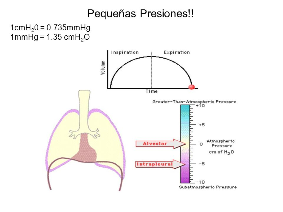 Pequeñas Presiones!! 1cmH20 = 0.735mmHg 1mmHg = 1.35 cmH2O