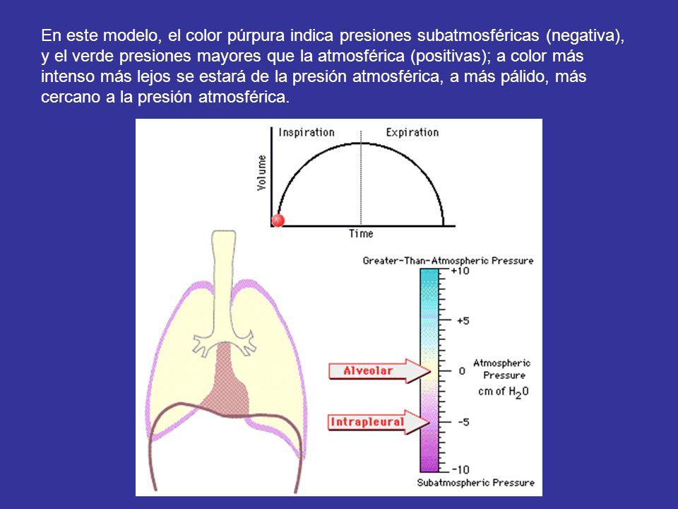 En este modelo, el color púrpura indica presiones subatmosféricas (negativa), y el verde presiones mayores que la atmosférica (positivas); a color más intenso más lejos se estará de la presión atmosférica, a más pálido, más cercano a la presión atmosférica.