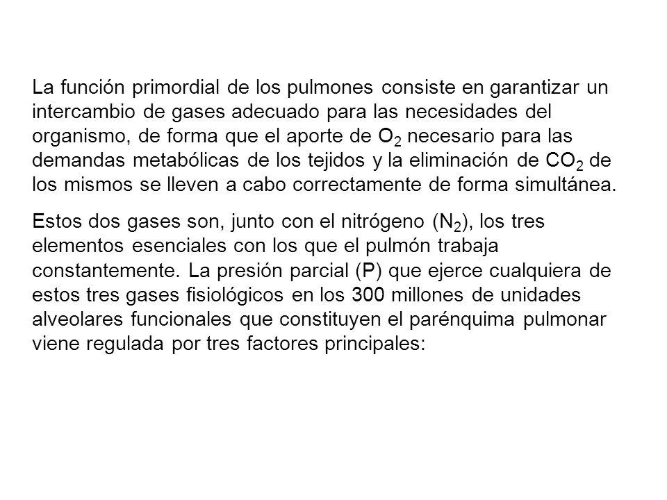 La función primordial de los pulmones consiste en garantizar un intercambio de gases adecuado para las necesidades del organismo, de forma que el aporte de O2 necesario para las demandas metabólicas de los tejidos y la eliminación de CO2 de los mismos se lleven a cabo correctamente de forma simultánea.