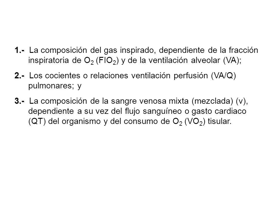 1.- La composición del gas inspirado, dependiente de la fracción inspiratoria de O2 (FIO2) y de la ventilación alveolar (VA);